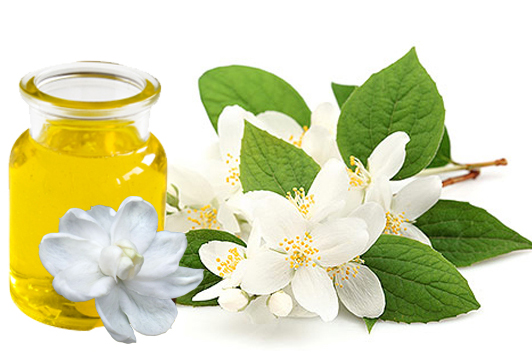 jasmine oil benefits and uses