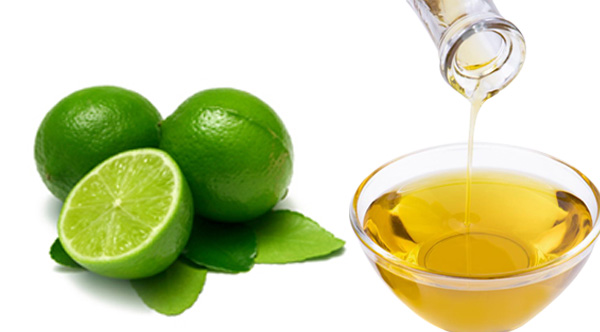 lime essential oil uses and benefits